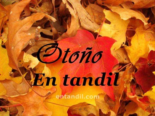otoño en tandil 02