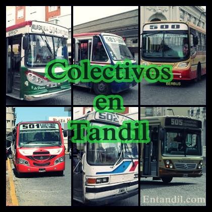 Entandil.com_colectivos